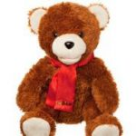 Picture of Go Bible Bear