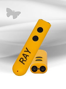 Picture of Ray